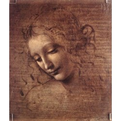 Female Head by Leonardo Da Vinci - Art gallery oil painting reproductions