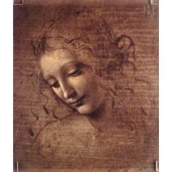 Female Head by Leonardo Da Vinci - Art gallery oil painting reproductions