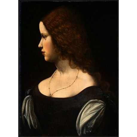 Portrait Of A Young Lady by Leonardo Da Vinci-Art gallery oil painting reproductions