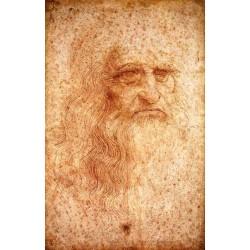 Self Portrait by Leonardo Da Vinci-Art gallery oil painting reproductions