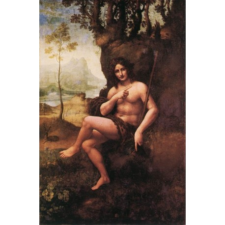 St John in the Wilderness by Leonardo Da Vinci-Art gallery oil painting reproductions