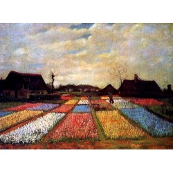 Bulb Fields by Vincent Van Gogh - Art gallery oil painting reproductions