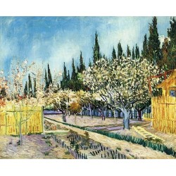 Orchard Surrounded by Cypresses by Vincent Van Gogh - Art gallery oil painting reproductions