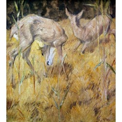 Zwei Rehe im Schilf by Franz Marc oil painting art gallery
