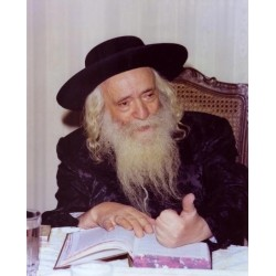 Klausenberger Rebbe | Jewish Art Oil Painting Gallery