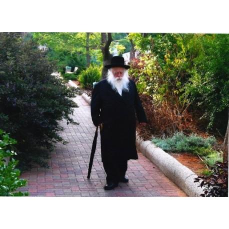 R Chaim Kanievsky 2 | Jewish Art Oil Painting Gallery