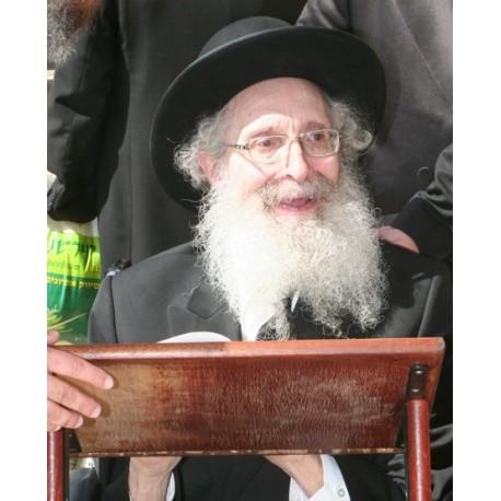 Rabbi Finkel 3 | Jewish Art Oil Painting Gallery