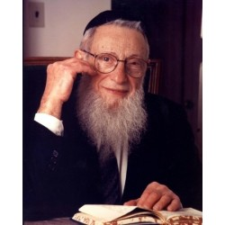 Rabbi Henoch Leibowitz | Jewish Art Oil Painting Gallery
