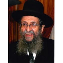 Rabbi Shmuel Kaminetzky   Jewish Art Oil Painting Gallery