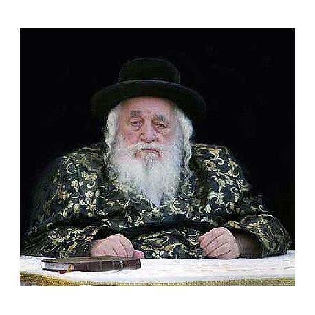 Viznicher Rebbe 2 | Jewish Art Oil Painting Gallery