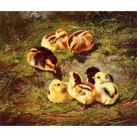 Chickens By Arthur Fitzwilliam Tait - Art gallery oil painting reproductions