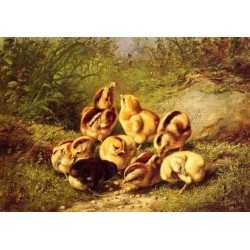 Chicks Rather Hard Fare By Arthur Fitzwilliam Tait - Art gallery oil painting reproductions