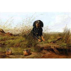 Cocker Spaniel and Woodcock By Arthur Fitzwilliam Tait - Art gallery oil painting reproductions