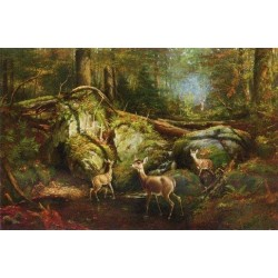 Deer in the Adirondacks By Arthur Fitzwilliam Tait - Art gallery oil painting reproductions