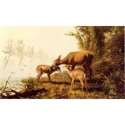 Deer in the Woods By Arthur Fitzwilliam Tait - Art gallery oil painting reproductions