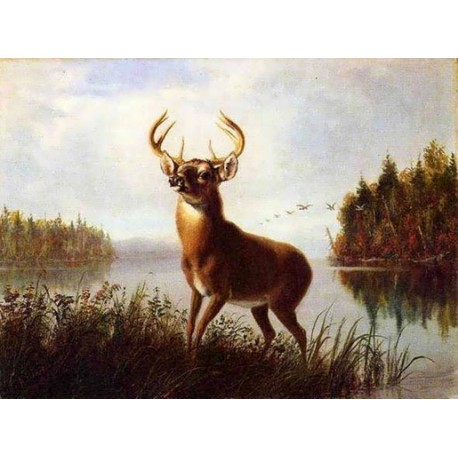Eight Point Stag By Arthur Fitzwilliam Tait - Art gallery oil painting reproductions