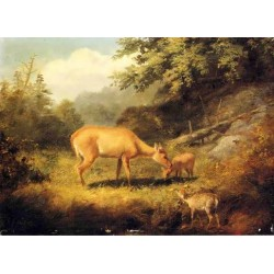 Maternal Affection By Arthur Fitzwilliam Tait - Art gallery oil painting reproductions