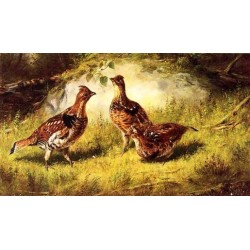 Ruffed Grouse By Arthur Fitzwilliam Tait - Art gallery oil painting reproductions