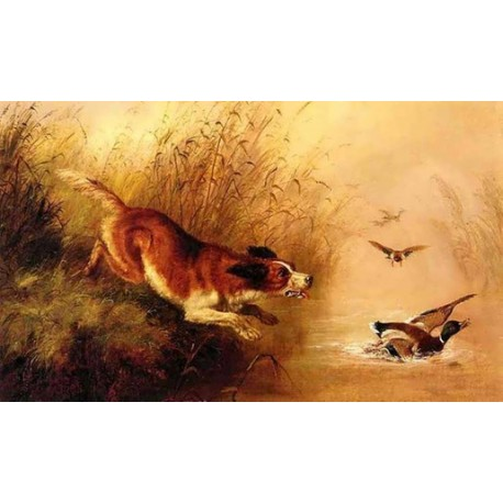 Spaniel Chasing Ducks By Arthur Fitzwilliam Tait - Art gallery oil painting reproductions