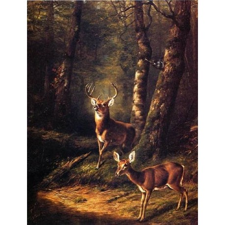 The Forest Adirondacks By Arthur Fitzwilliam Tait - Art gallery oil painting reproductions