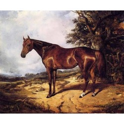 Thoroughbred By Arthur Fitzwilliam Tait - Art gallery oil painting reproductions