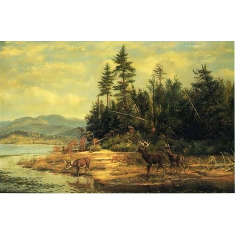 View on Long LakeBy Arthur Fitzwilliam Tait - Art gallery oil painting reproductions