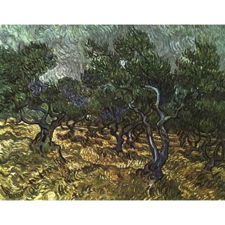 The Olive Grove by Vincent Van Gogh - Art gallery oil painting reproductions