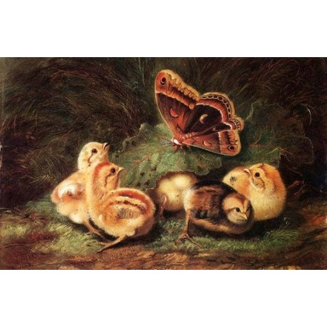 Young Chickens By Arthur Fitzwilliam Tait - Art gallery oil painting reproductions