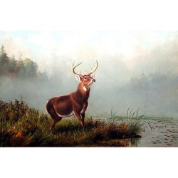 Buck at Bay By Arthur Fitzwilliam Tait - Art gallery oil painting reproductions