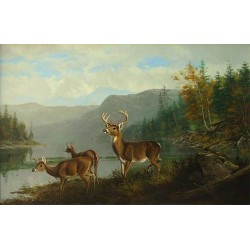 Landscape with Deer By Arthur Fitzwilliam Tait - Art gallery oil painting reproductions