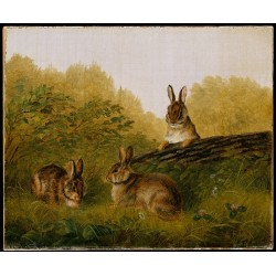 Rabbits on a Log By Arthur Fitzwilliam Tait - Art gallery oil painting reproductions