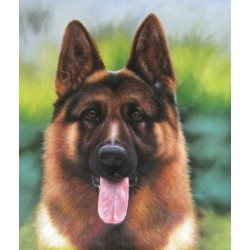Dog Oil Painting 1 - Art Gallery Oil Painting Reproductions