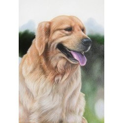Dog Oil Painting 2 - Art gallery Oil Painting Reproductions