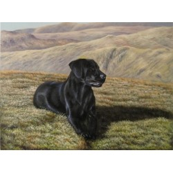 Dog Oil Painting 6 - Art Gallery Oil Painting Reproductions