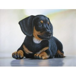 An Adorable Dog - Art Gallery Oil Painting Reproductions