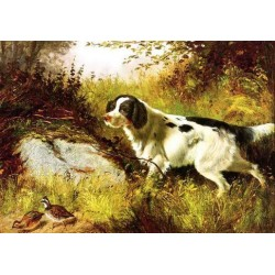 Dog Oil Painting 25 - Art Gallery Oil Painting Reproductions