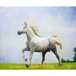 Horses Oil Painting 3 - Art gallery Oil Painting Reproductions