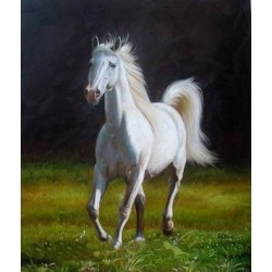 Horses Oil Painting 9 - Art gallery Oil Painting Reproductions