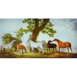 Horses Oil Painting 23 - Art gallery Oil Painting Reproductions