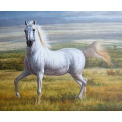 Horses Oil Painting 27 - Art gallery Oil Painting Reproductions
