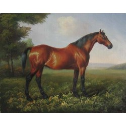 Horses Oil Painting 30 - Art gallery Oil Painting Reproductions