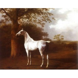 Horses Oil Painting 38 - Art gallery Oil Painting Reproductions