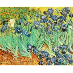 Irises by Vincent Van Gogh - Art gallery oil painting reproductions