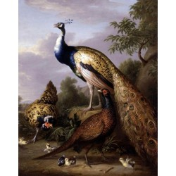 Peacock, Hen and Cock Pheasant in a Landscape by Tobias Stranover  - oil painting art gallery