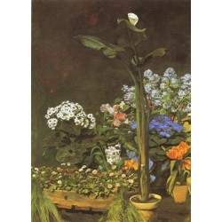 Arum and Conservatory Plants 1864 by Pierre Auguste Renoir-Art gallery oil painting reproductions