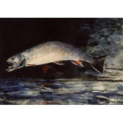 A Brook Trout by Winslow Homer - Art gallery oil painting reproductions