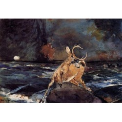 A Good Shot - Adirondacks by WInslow Homer Art gallery oil painting reproductions
