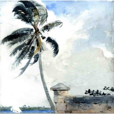 A Tropical Breeze, Nassau by Winslow Homer - Art gallery oil painting reproductions