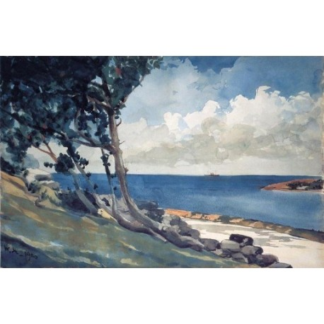 North Road, Bermuda by Winslow Homer - Art gallery oil painting reproductions