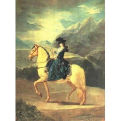 Equestrian Portrait of Dona Maria Teresa Vallebriga by Francisco de Goya-Art gallery oil painting reproductions